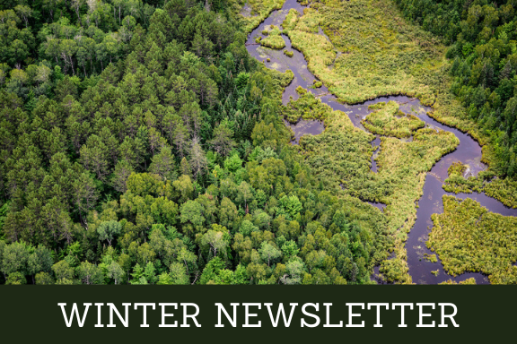 Winter Newsletter with aerial photo of forest